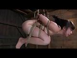 BDSM Aziatische slaaf Nyssa Nevers opgeschort slagroom in slavernij
